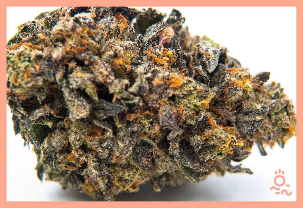 Diem Cannabis Flower Purple Punch